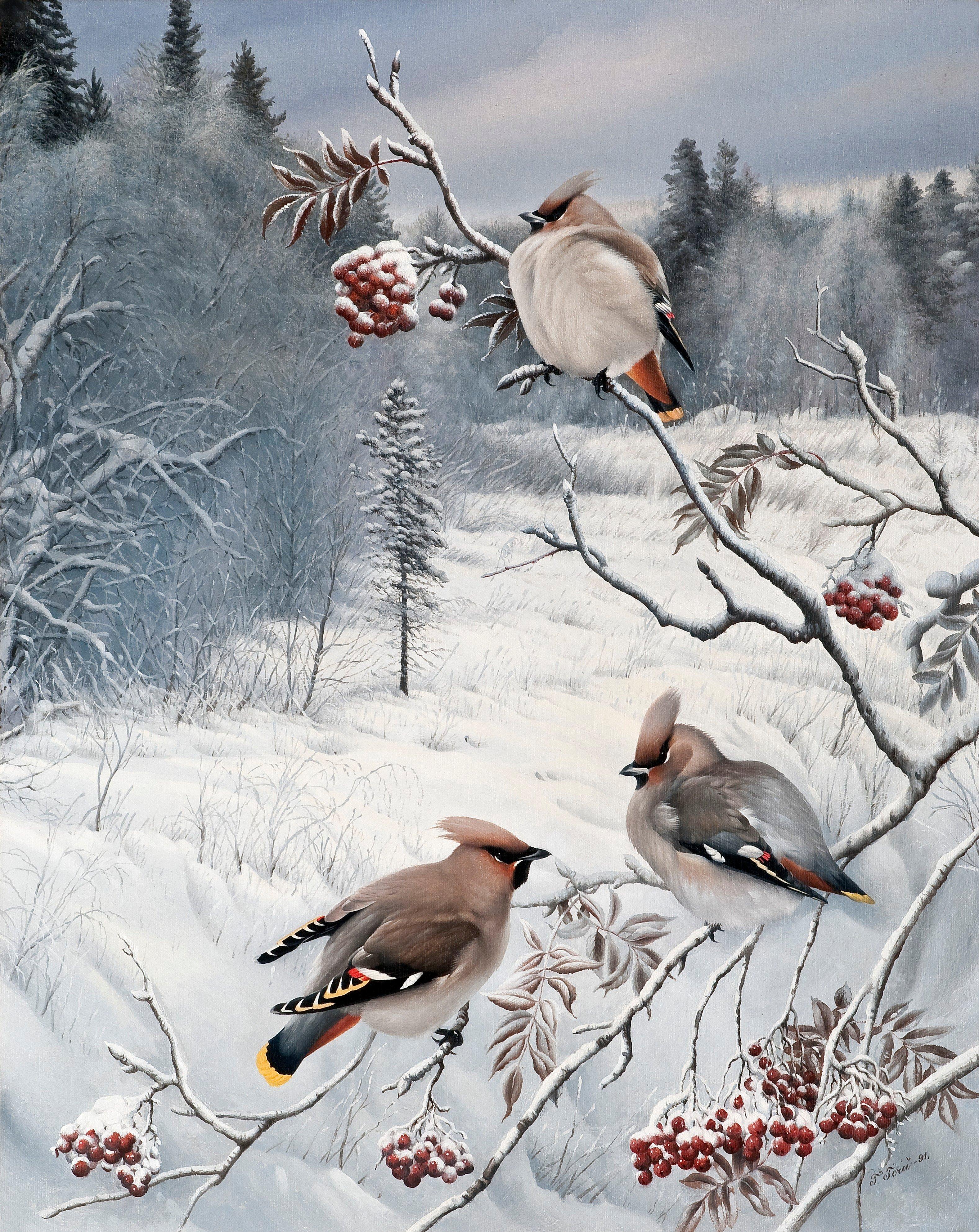 Зима анимационные открытки 3