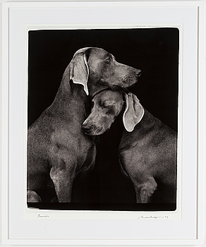 WILLIAM WEGMAN, fotografi, signerat och daterat 2009.