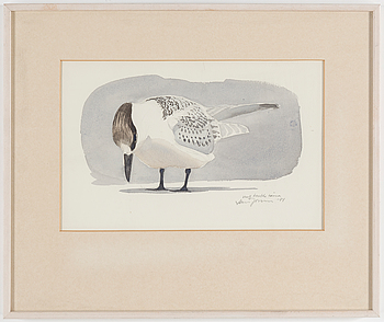 LARS JONSSON, akvarell på papper, signerad, daterad -81.