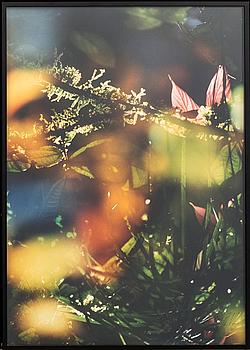 MATTIAS KLUM, färgfotografi, signerat och numrerat 7/10. +bok.