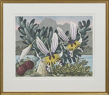 KARL AXEL PEHRSON, färglitografi, numrerad H.C. VI/XL och signerad.