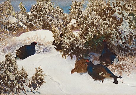 Bruno liljefors, orrar i vinterlandskap