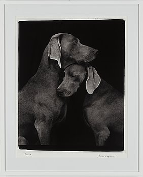 WILLIAM WEGMAN, fotografi, signerat och daterat -09.