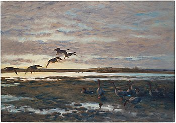 468. Bruno Liljefors, Geese in the field.