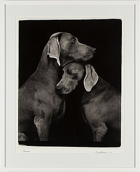 """William Wegman """"Friends"""" , 2009 Signed and numbered on the back of print."""