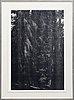 Wolfgang tillmans,  inkjet print, signed, no 2/25+5 ap.