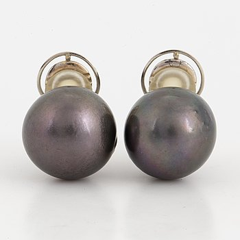 Pair of large cultured 'Tahiti' pearl earrings.