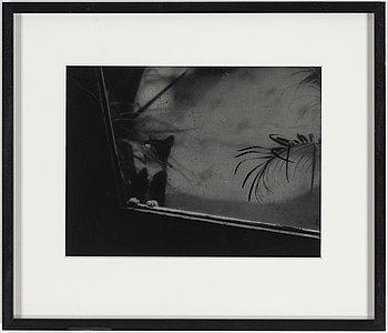 KENNETH GUSTAVSSON, gelatin silver print.