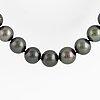 Cultured tahiti pearl necklace