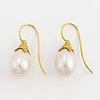 Drop shapet cultured pearl earrings