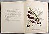 Book: swedish fruits, pihl & eriksson, 1924, one volume.