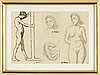 Agnes cleve, 4 drawings, framed together. signed with stamp a cleve.