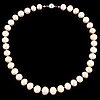 Cultured freshwater pearl necklace.