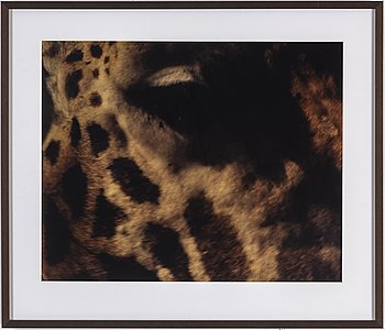 MARTINA HOOGLAND IVANOW, analog c-print. Signed and numbered 1/5 on verso.