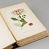 """A set of litographic booklets, """"nordens flora efter palmstruch m.fl."""", a. börtzells, stockholm, first half of the 20th c."""
