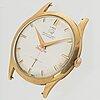 Tiger, wristwatch, 34 mm.