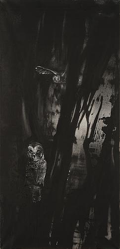 "Anne tompuri, ""landscape(owls)""."