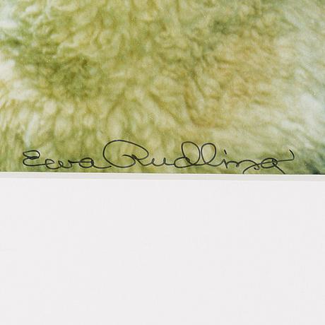 Ewa rudling, color photograph, signed.
