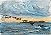 "Axel sjöberg, ""ejdersträck"" (common eiders at dusk)."