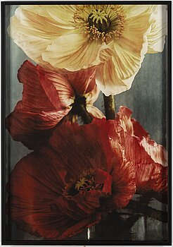 EWA-MARIE RUNDQUIST, photograph signed and numbered 1/1 on verso.