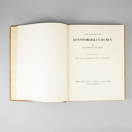 Karl blossfeldt, 'konstformer i naturen'.