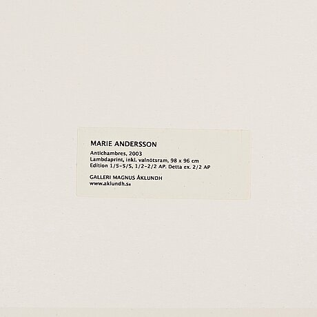 Marie andersson, lambdaprint. signed marie andersson and numbered ap 2/2 on verso. executed 2003.
