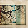 "Mike & doug starn (starn twins), ""tree 2 gifbim"", 2001."