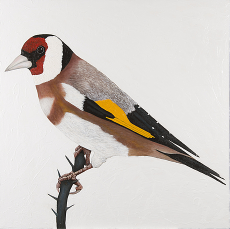 "Eric hynynen, , ""european goldfinch""."