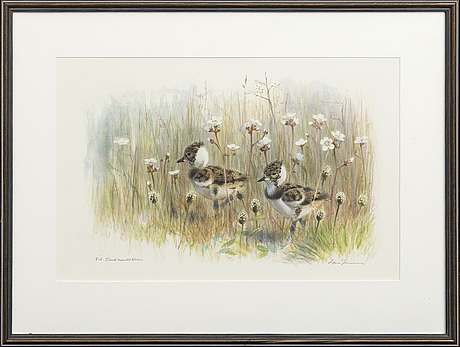 Lars jonsson, lithograph in colour, signed, e.a.