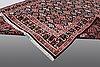 A carpet moud, ca 370 x 240 cm.