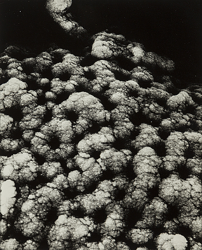 Lennart nilsson, seven gelatin silver prints with stamps on verso.