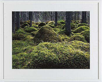 HENRIK BONNEVIER, C-print. Signed and dated 2018. Numbered 2/3.