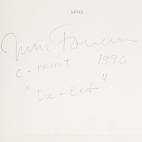 Johan fowelin, c-print, signed and dated 1996 verso.