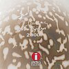 Oiva toikka, annual glass bird year 2000, signed o. toikka nuutajärvi 2000.