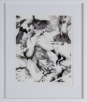 THOMAS KLEMENTSSON, photograph signed and dated 2012, edition 2/20.