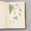 Three books 'bilder ur nordens flora', 1905.