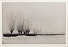 Gunnar norrman, drypoint signed dated and numbered 1962 2/10.