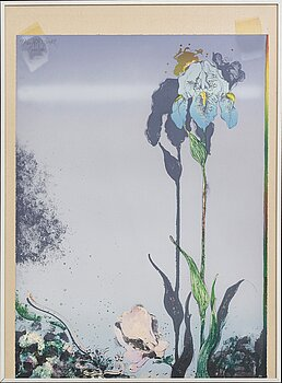 ARDY STRÜWER, lithograph in colours signe dated and numbered 17/150 1980.