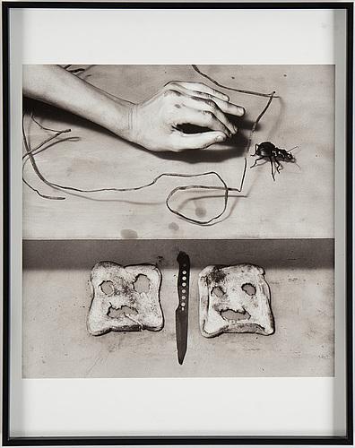 Roger ballen, fotografi, archival ink on cotton rag paper, signerat och numrerat a tergo, 97/250.