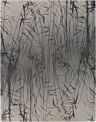 Åke e:son lindman, photograph signed and dated 1989 on verso.