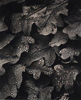 """225. Hans Hammarskiöld, """"Morgondagg"""", 1952."""