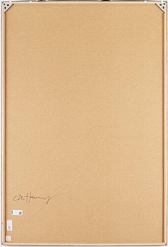 Carl michael von hausswolff, fotografi ur red series signerad a tergo.
