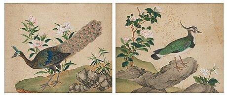 Kinesisk konstnär, akvarell på papper, två stycken. qingdynastin, omkring 1800.