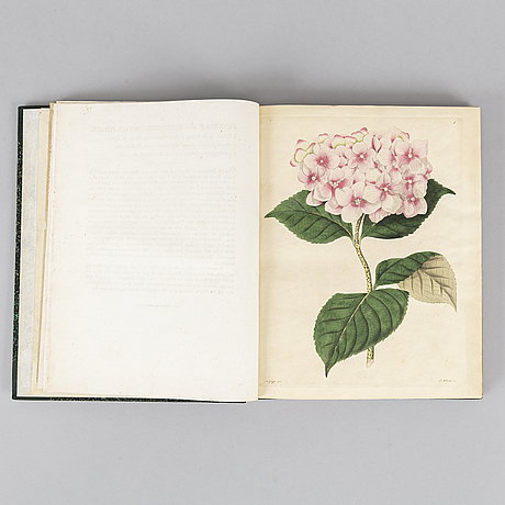 With 36 engraved botanical plates.