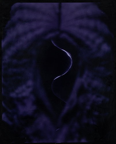 Björn keller, fotografi, silvergelatin, ur serien kroppar. boken kroppar medföljer.