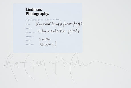 Åke e:son lindman, diptyche photograph unique signed on verso.