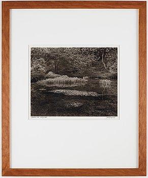 John Blakemore, photography signed.