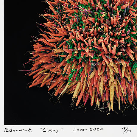 Nathalia edenmont, pigment print, signerad och daterad 2018-2020, numrerad 17/50.