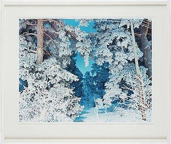 Hans Malm,  archival pigment inkjet print, 2011, signed 2/10.