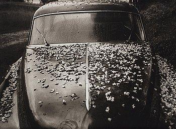 """124. Christer Strömholm, """"Lyon"""", 1964."""